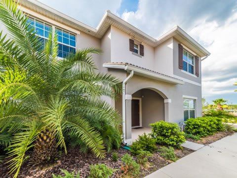 Building,Palm Tree,Tree,Path,Sidewalk