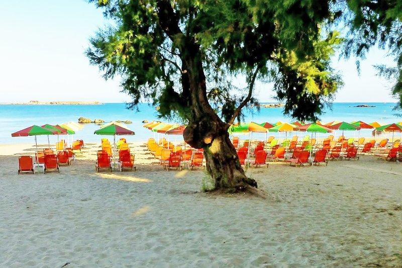 The nearby organized sandy beach
