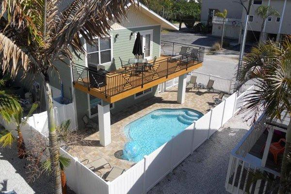 Yard, Palm Tree, Tree, Pool, Water