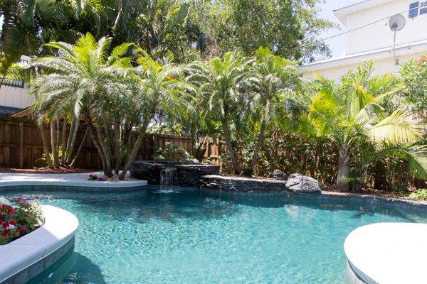 Pool, Water, Vegetation, Resort, Swimming Pool