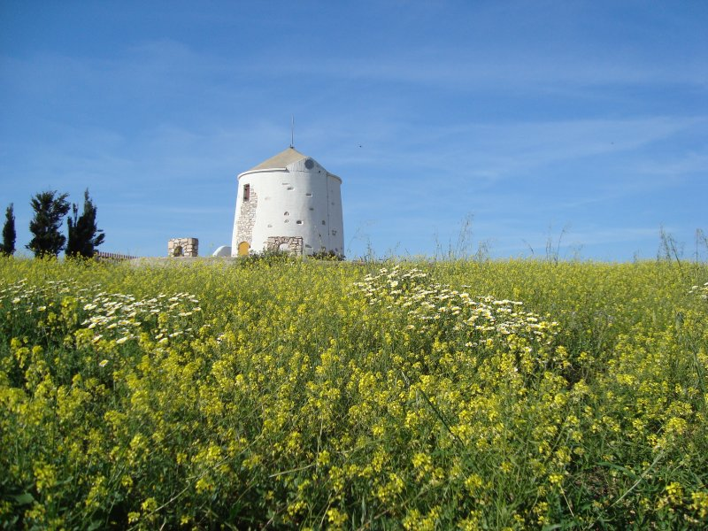 TRADITIONAL WINDMILL, Ferienwohnung in Lefkes