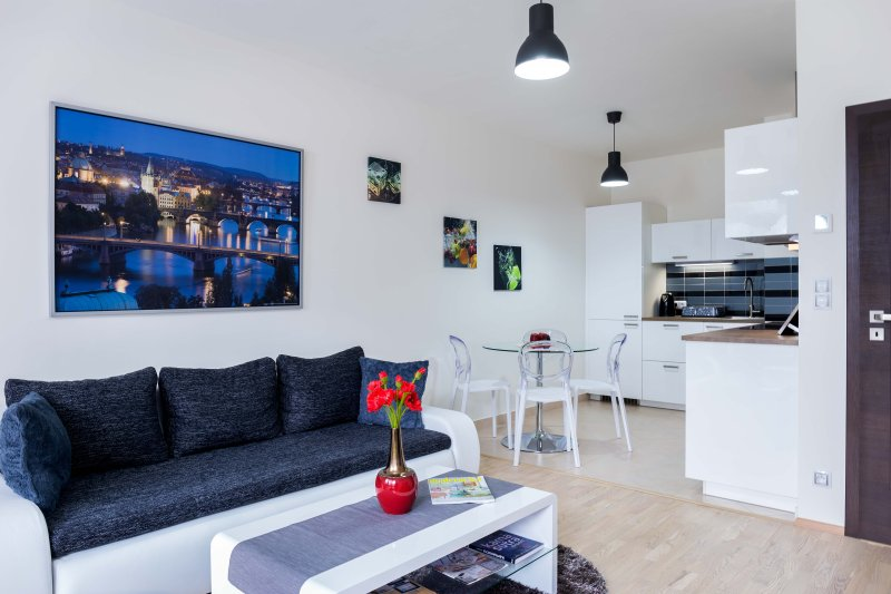 MOLLY'S  APARTMENT WITH TERRACE & PARKING, vacation rental in Ricany
