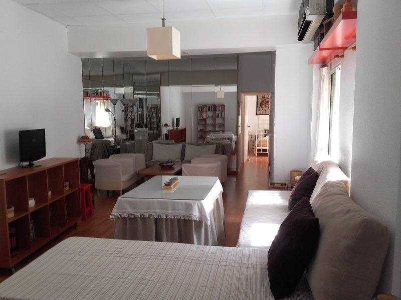 Salón comedor amplio, con tres sofás camas.A.Acondicionado de 6000 frigorías. Muy luminoso.