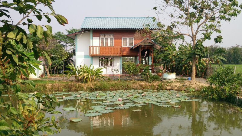 House as seen over the fish pond