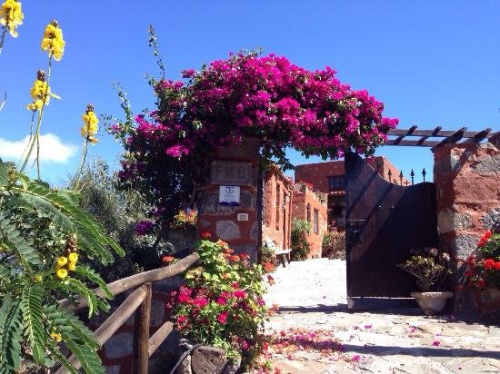 Casa Rural Mirador del Sur, holiday rental in Tafira Baja