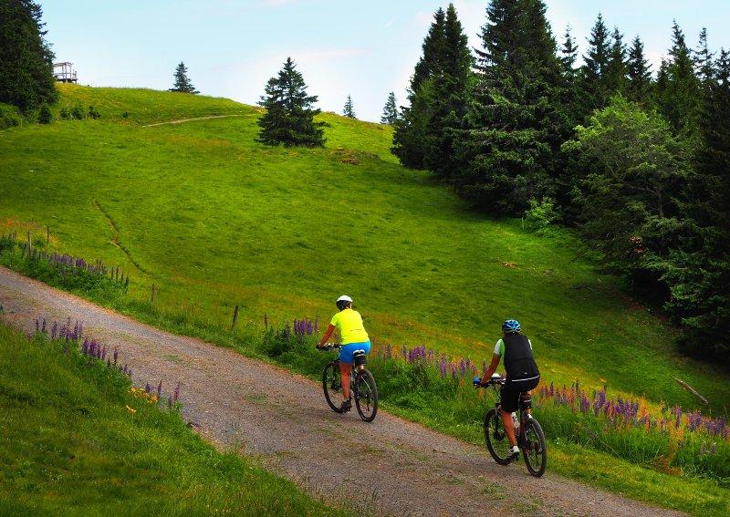 emprestar e-bikes gratuitamente