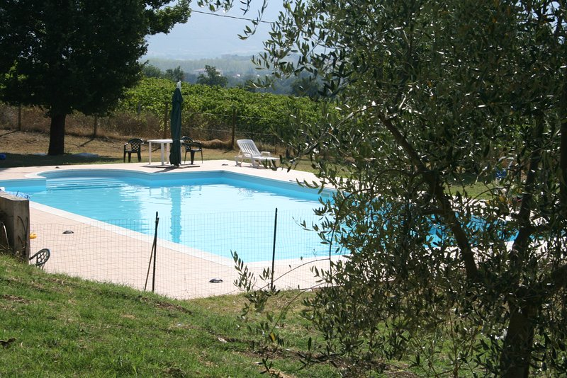 Amazing apartment with shared pool, holiday rental in Castel Ritaldi
