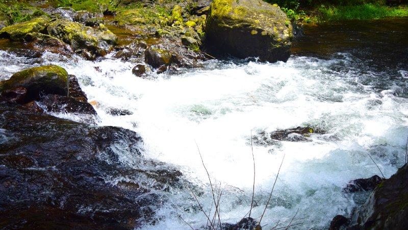 stream nearby