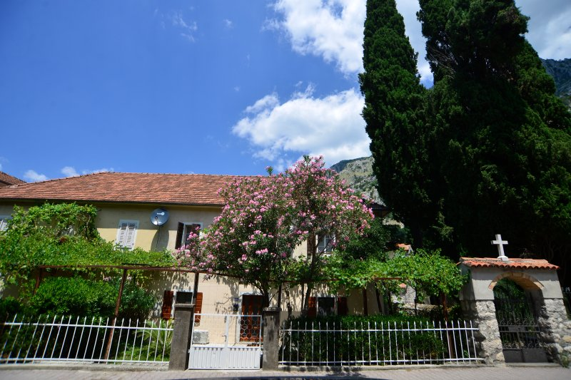 House 561 - Yellow apartment, holiday rental in Kotor