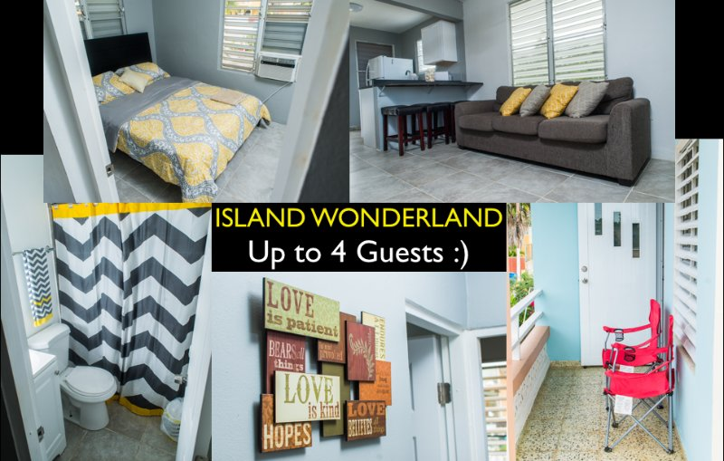 Island Wonderland, holiday rental in San Antonio
