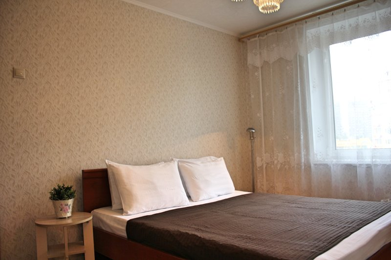 Inndays в Новых Черемушках, vacation rental in Semyonovskoye