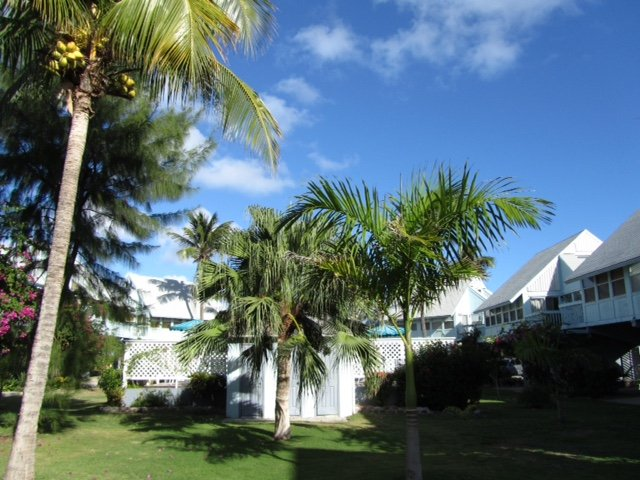 Condo on the beach, holiday rental in Frigate Bay