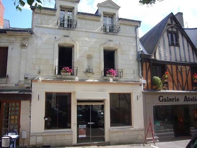 Au coeur de la vieille ville de Chinon à proximité des restaurants, holiday rental in Chinon