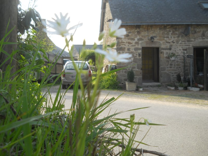 Owl Cottage, vacation rental in Champgenéteux