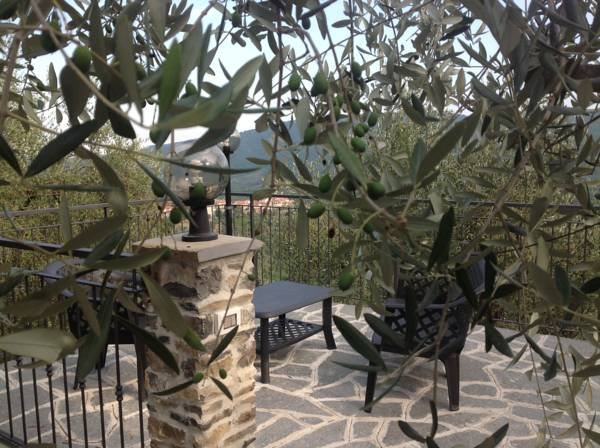 Villa Ulivo, location de vacances à Caravonica