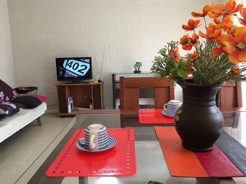 Casa Comoda y Moderna - Excelente ubicación en Serena, vacation rental in La Serena