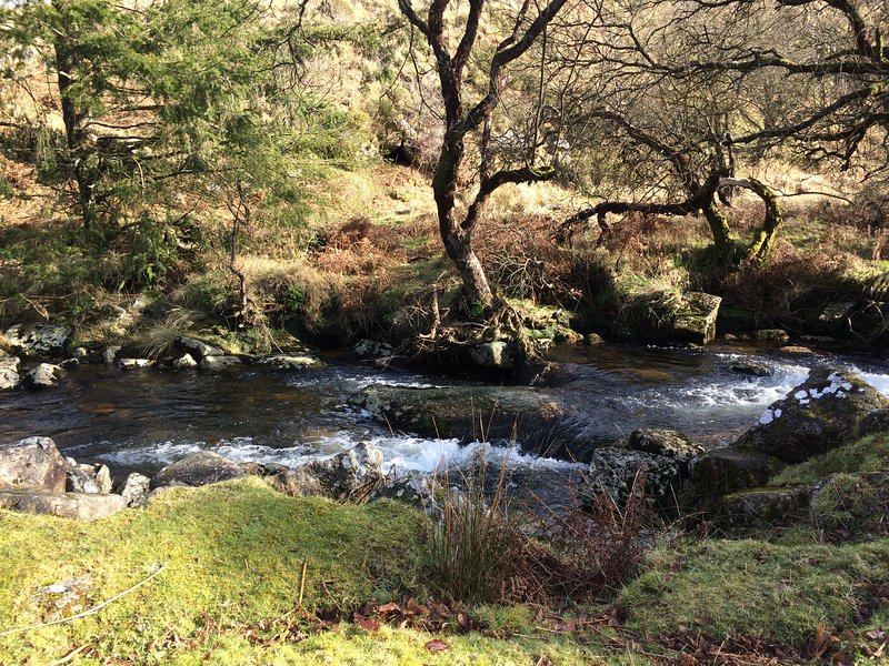 The river Taw forms one of the boundaries of the grounds.