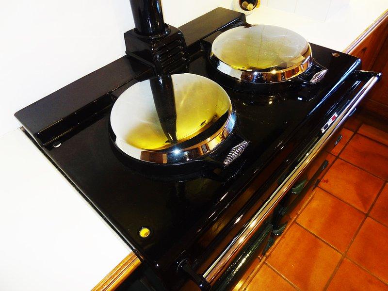 L'Aga è semplice - ma c'è un forno elettrico e piano cottura nel ripostiglio - e un forno a microonde!