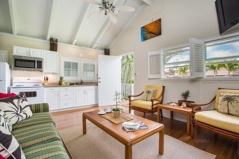 Guest cottage living room and kitchenette.