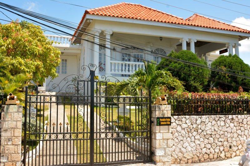 Paradise Palms Jamaica Studio