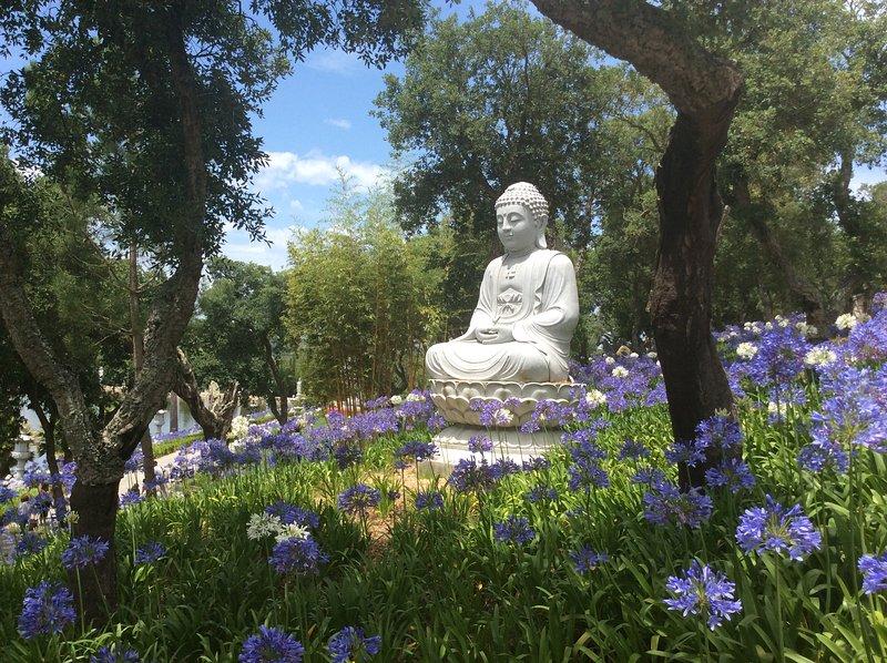 Buddha Eden gardens.