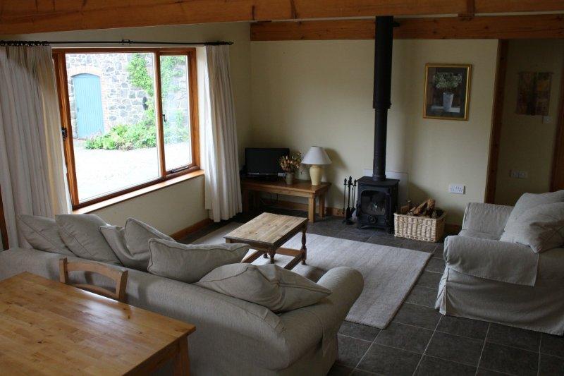 coin salon confortable avec télévision par satellite et poêle à bois