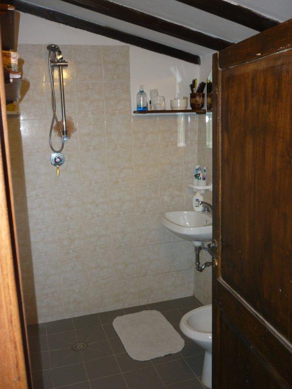 bathroom with dociia