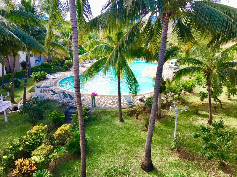 Piscine et jardin tropical.