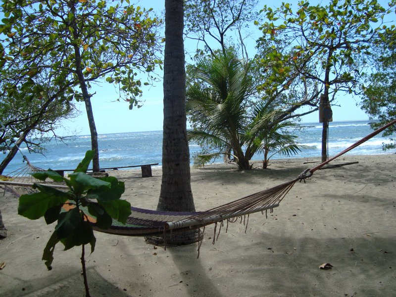 hammocks & beach chairs right outside your door YOUR beach & ocean:)