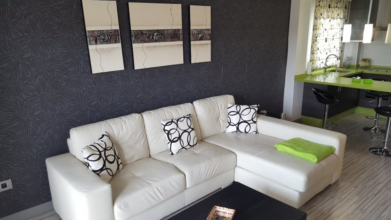 Excelente Apartamento exquisitamente amueblado y equipado, location de vacances à Palm-Mar
