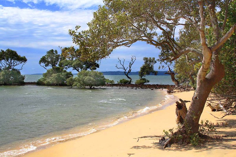Morwong Beach is ideal for swimming, fishing, boating or just relaxing.