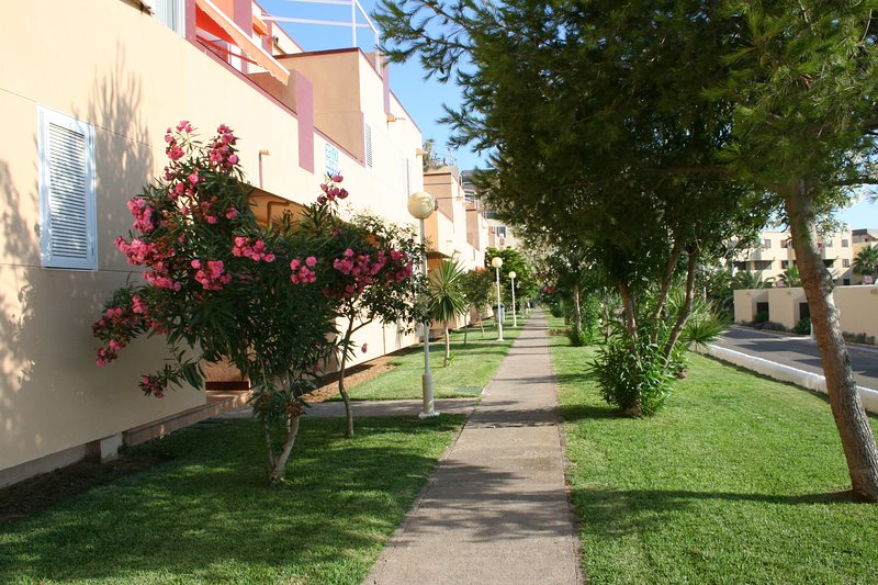 la strada con giardini e alberi agli appartamenti
