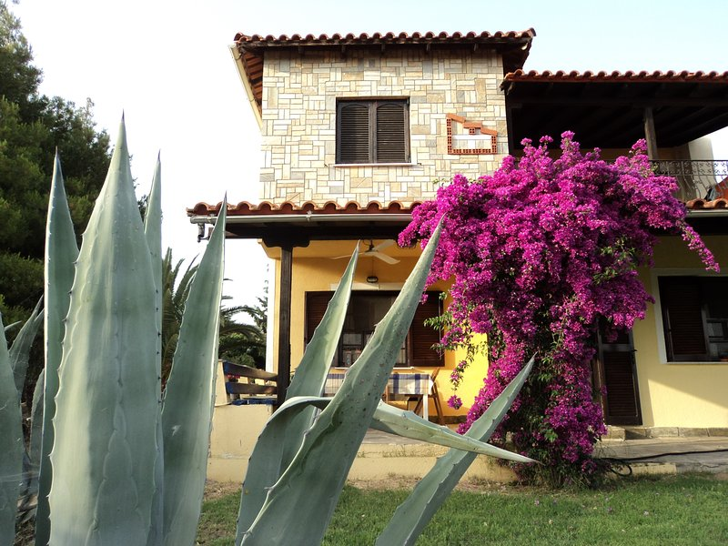 Villa Anastasia, Xiropotamo, Ierissos, Chalkidiki, big yard, close to sea, holiday rental in Ouranoupoli
