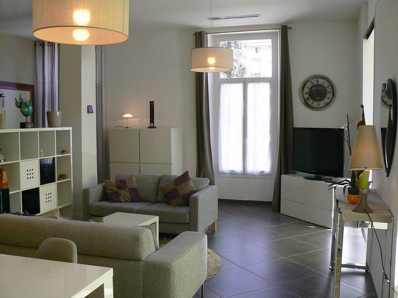 Magnifique loft  a proximite des thermes pres d un parc arbore tres calme, holiday rental in Prades