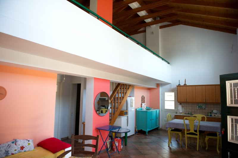 House in the olive grove, holiday rental in Mouzaki