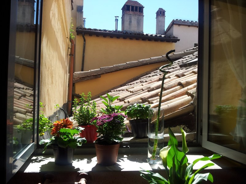 Antico Gioiello Umbro Rooms, holiday rental in Foligno