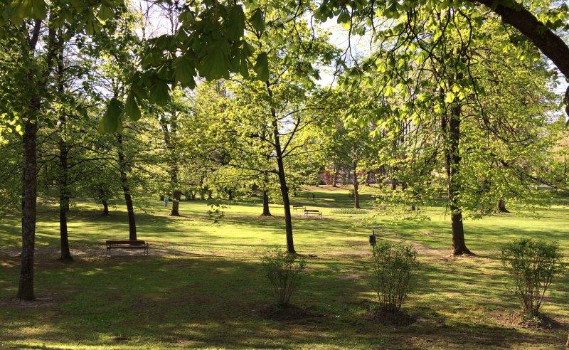 Viele Parks zu Fuß erreichbar