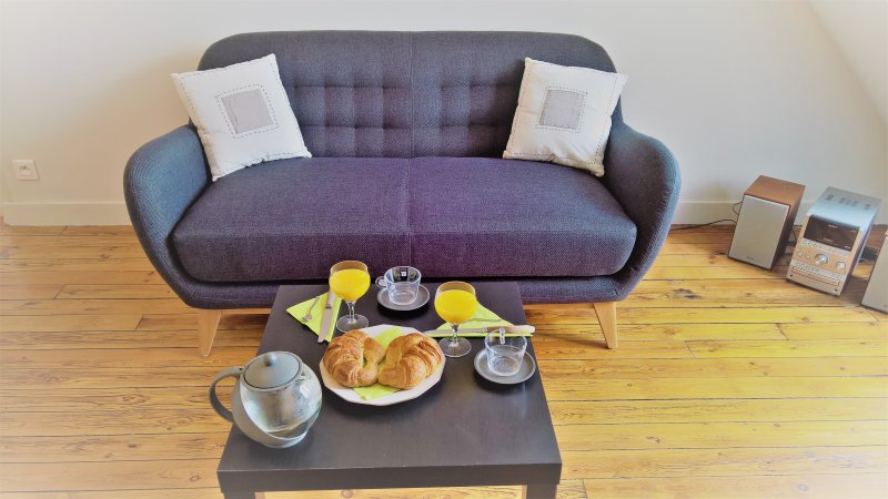 Cosy apatment with great view of Paris rooftop, holiday rental in Saint-Denis