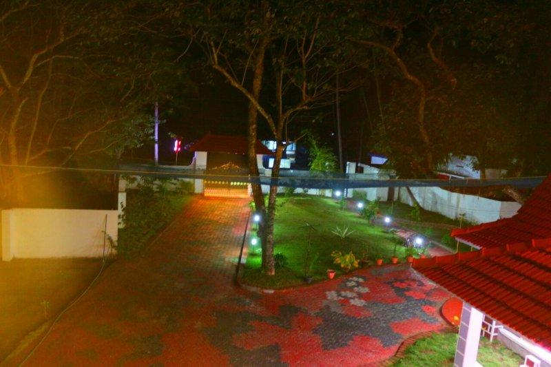 Garden view at night