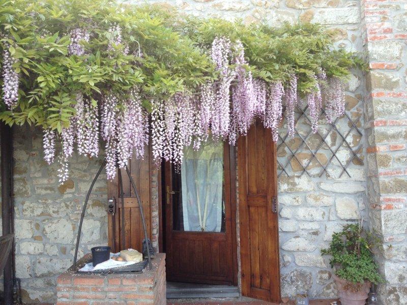 Natura e Tradizione si fondono all'ingresso di Casa Sereno