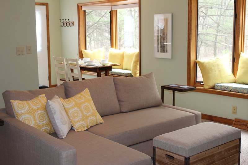 Bright, comfortable, living room with a couch that turns into a full size bed.