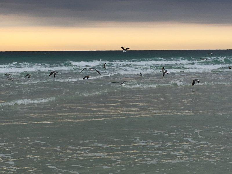 Mattina in spiaggia