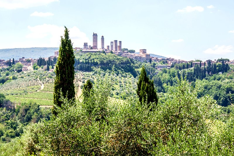 A wonderful view towards San Gimignano & the towers