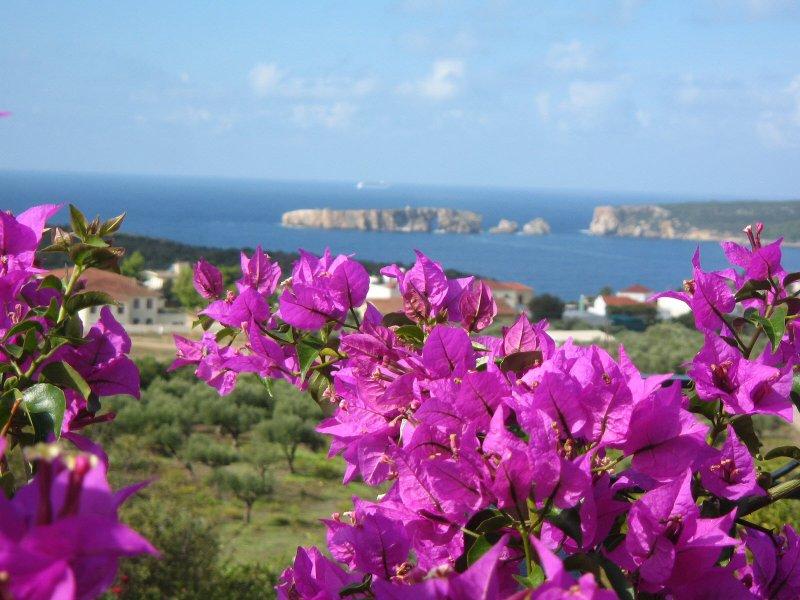 Mediterranean View, vacation rental in Pylos