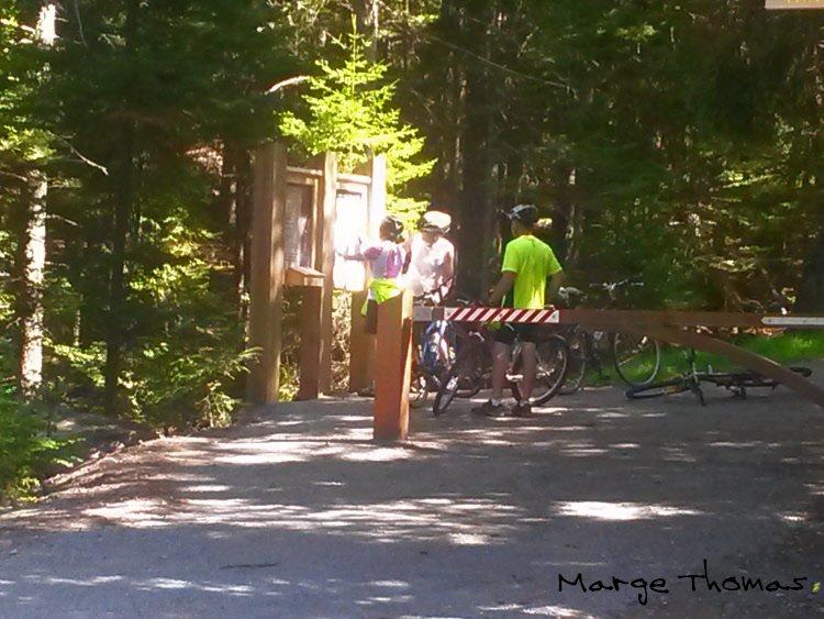 El primer carril bici, tan pronto como entras en el parque