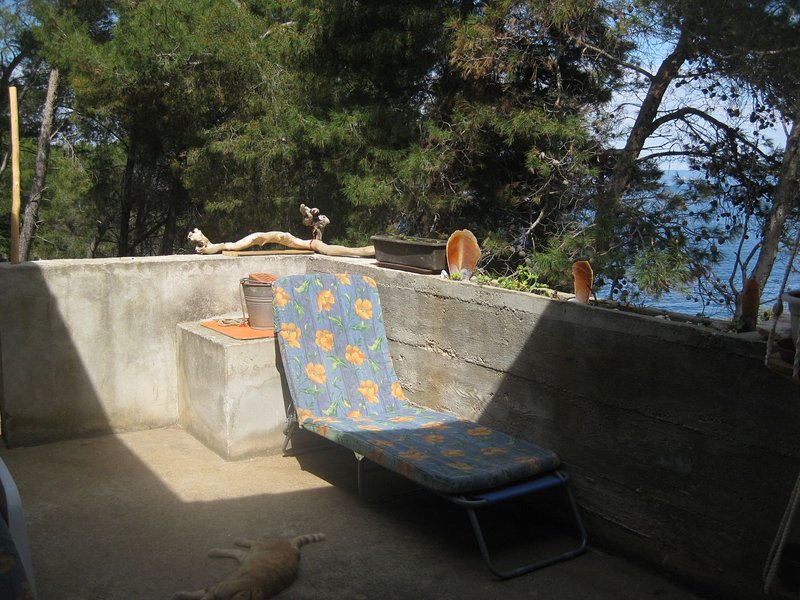 H(5): terrace