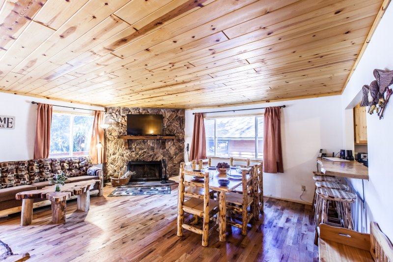 Open living area with fireplace & log furniture