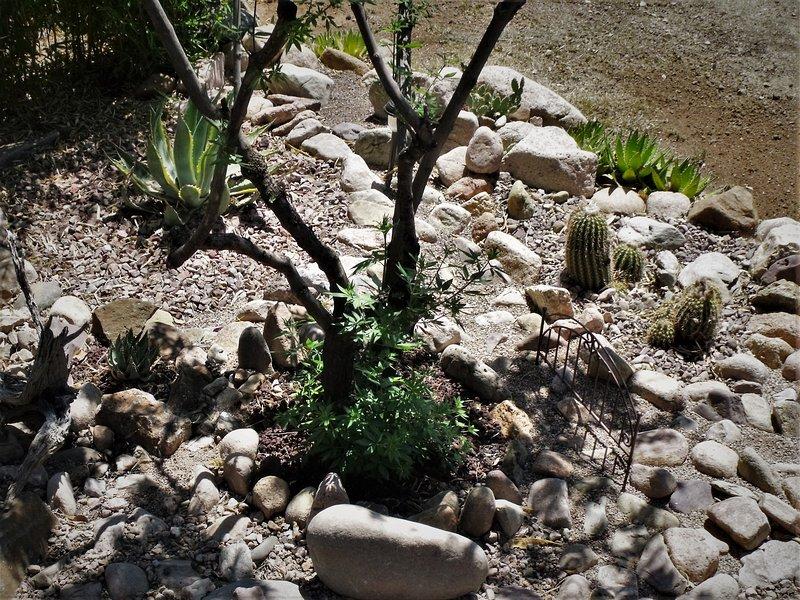 rocas locales vienen en una variedad de colores para que seleccionan lo que pudimos para mostrar realmente fuera el jardín.