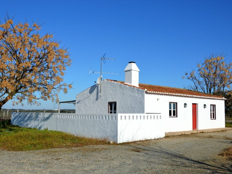 Gardian's House Surrounded by Vineyards and Oak and Olive Trees, alquiler vacacional en Ponte de Sor
