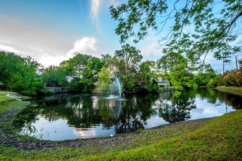 Dieser ruhige Teich Gesichter unsere Terrasse. Es ist mit Fisch, Enten und Schildkröten bestückt.